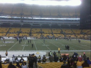 1steelerspanthers122310