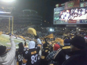 2steelerspanthers122310