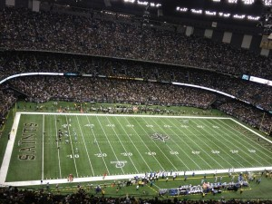 Saints Lions Wild Card Game